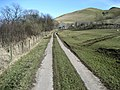 Access Lane to Moorside - geograph.org.uk - 1737749.jpg