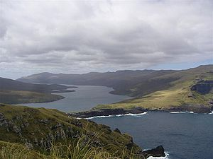 Adams Island, New Zealand - Adams Island, to the right of Carnley Harbour
