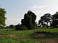 Adior Village.jpg