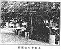 Aginkgo tree of Zyônitizi.jpg