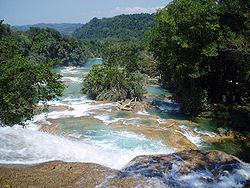 Agua azul downwards.jpg