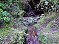 Agua corriendo entre las rocas - panoramio.jpg