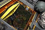 Air Cav lends JRTC help to 10th MTN DVIDS347128.jpg