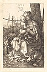 Albrecht Dürer - The Virgin and Child Seated by a Tree (NGA 1943.3.3518).jpg