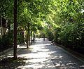 Allée Alexandre-Vialatte, Paris 13.jpg