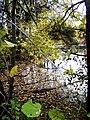 Allan's Mill pond, October, 2009 (5020617649).jpg