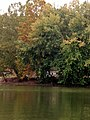 Allegheny River Kittanning Fall 2016 - panoramio - Ron Shawley (36).jpg