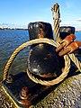 Along the Thames (12036718144).jpg