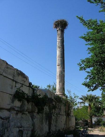 Ancient column stork nest Milas Turkey