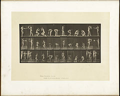 Animal locomotion. Plate 501 (Boston Public Library).jpg