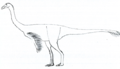 Anserimimus LM.png