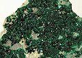 Antlerite-pas-72b.jpg