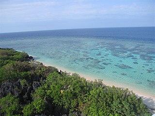 Apo Reef reef