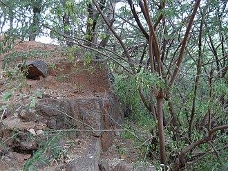 Aralvaimozhi - Image: Aralvaimozhi fort remains 2