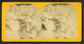 Arctic Sentinels, from Robert N. Dennis collection of stereoscopic views.png