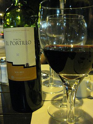 Bottle and glass of Malbec wine from Argentina