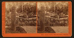 Hotel Del Monte - Image: Arizona Garden, Hotel Del Monte, Monterey, by Watkins, Carleton E., 1829 1916