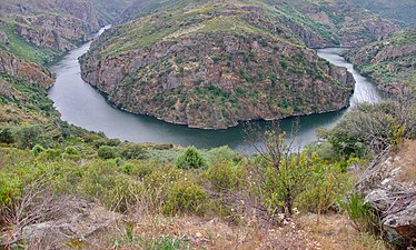 Arribes del Duero Entre Fermoselle y Pinilla.jpg