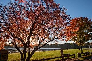 Rochester Hills, Michigan City in Michigan, United States