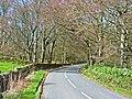 B733 through the woods near Kirkcowan - geograph.org.uk - 163233.jpg