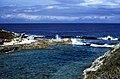 Bahamas 1989 (689) San Salvador (25610717630).jpg