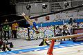 Balance 8 2015 Pan Am Games.jpg