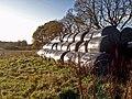 Baled silage near Flemington Farm - geograph.org.uk - 281436.jpg