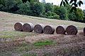 Bales of hay (1294678261).jpg