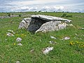 Ballymihil Wedge Tomb in the Burren - geograph.org.uk - 858587.jpg