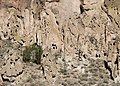 Bandelier National Monument, New Mexico - panoramio (25).jpg