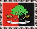 Bandera de la Comunidad Paravachasca de Comechingones.jpg