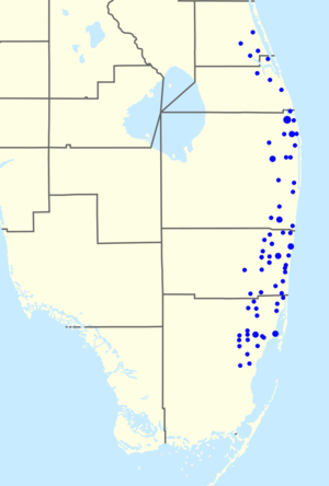 BankAtlantic - BankAtlantic's branch footprint in southern Florida as of June 2011.
