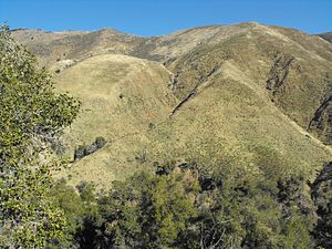 Laguna Mountains