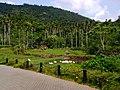 Baoting, Hainan, China - panoramio (14).jpg