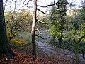 Bardsley Vale - geograph.org.uk - 1049850.jpg