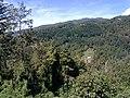 Barga, Province of Lucca, Italy - panoramio - jim walton (20).jpg