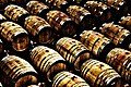 Barrels at Groot Constantia.jpg