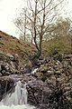 Barrow Beck - geograph.org.uk - 705507.jpg