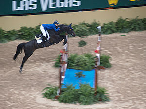 Bascule (horse) - The path this horse takes through the air is an arc