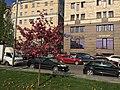 Basmanny, Moscow 2019 - 7180.jpg