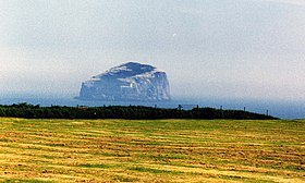 Bass Rock, Firth of Forth, Scotland.jpg