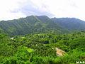 Bayugans Nature Beauty.jpg