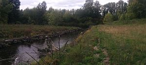 Marymoor Prehistoric Indian Site - Confluence of Bear Creek and Sammamish River in Redmond, Washington, near the archaeological site