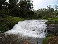 Bear Shola Fall - panoramio.jpg