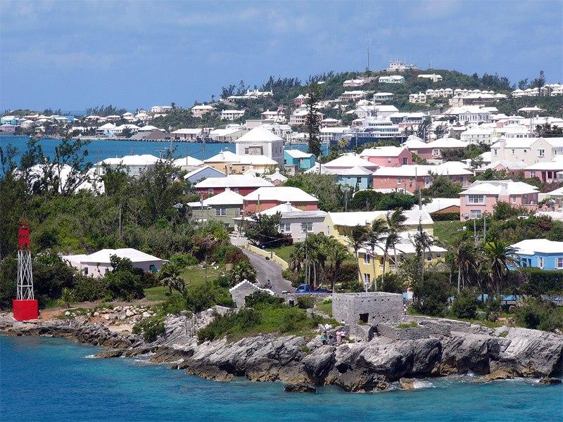 Bermuda wv