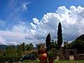 Bibbona - panoramio - villlamania.jpg