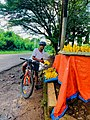 Bicycle cyclist Fruits Moshi Tanzania.jpg