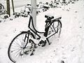 Bicycle in Amsterdam after heavy snow - 3.jpg