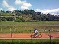 Bike Lane (5274110539).jpg