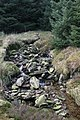 Black Craig Burn - geograph.org.uk - 337092.jpg